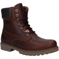 Zapatos Hombre Botas de caña baja Panama Jack PANAMA 03 WOOL C18 Marr?n