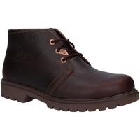 Zapatos Hombre Botas de caña baja Panama Jack BOTA PANAMA IGLOO C31 Marr?n