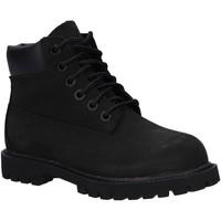Zapatos Niños Botas de caña baja Timberland 12807 6 IN PREMIUM WP Negro
