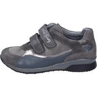 Zapatos Niña Zapatillas bajas Miss Sixty BK180 gris