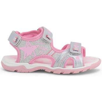 Zapatos Niño Sandalias de deporte Shone - 6015-025 Gris
