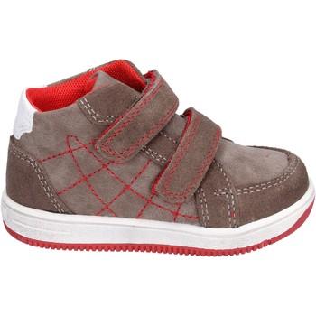Zapatos Niño Zapatillas altas Didiblu sneakers gamuza marrón