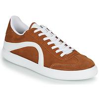 Zapatos Hombre Zapatillas bajas André POLO Marrón