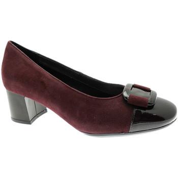 Zapatos Mujer Zapatos de tacón Soffice Sogno SOSO20780bor nero