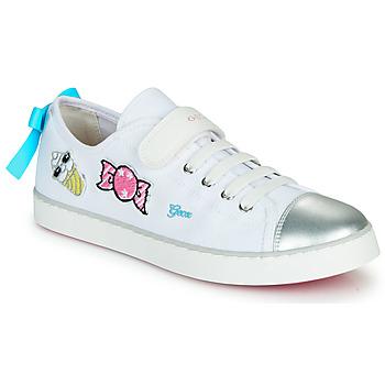 Zapatos Zapatillas bajas Geox JR CIAK FILLE Blanco / Plata