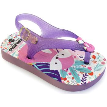 Zapatos Niña Chanclas Brasileras Chancla ®,Printed 20 Baby Fox Purple/Purple/Purple