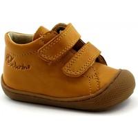 Zapatos Niños Botas de caña baja Naturino NAT-CCC-12904-ZU Giallo