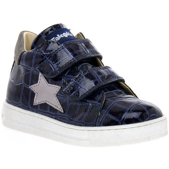 Zapatos Niña Zapatillas bajas Naturino FALCOTTO 2C06 SASHA BLEU Blu