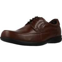 Zapatos Hombre Derbie & Richelieu Fluchos LUCA Marron