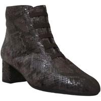 Zapatos Mujer Botines Brenda Zaro F1780 Castaño
