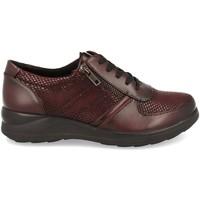 Zapatos Mujer Derbie Virucci VR0-128 Burdeos