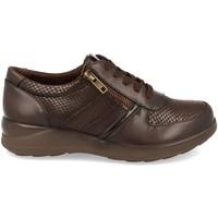 Zapatos Mujer Derbie Virucci VR0-128 Marron
