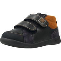 Zapatos Niño Zapatillas bajas Garvalin 201330 Azul