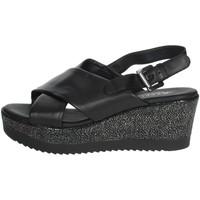 Zapatos Mujer Sandalias Repo 51529-E0 Negro