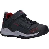 Zapatos Niño Multideporte Geox J04AEC 0ME15 J TERAM Azul
