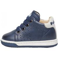 Zapatos Niño Deportivas Moda Falcotto - Polacchino blu ADAM-0C02 BLU