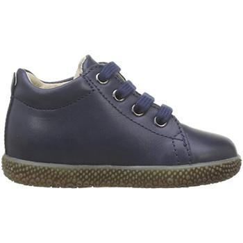 Zapatos Niño Deportivas Moda Falcotto - Polacchino blu ANEMONE-0C02 BLU