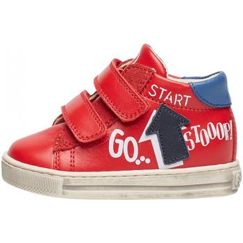 Zapatos Niño Deportivas Moda Falcotto - Polacchino rosso/azz/blu HOGWA-1H02 ROSSO