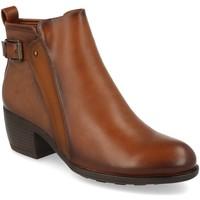 Zapatos Mujer Botines Virucci VR0-161 Camel
