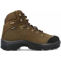 Zapatos Hombre Senderismo Chiruca Botas  Pointer Force 21 Gore-Tex Verde