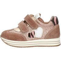 Zapatos Niña Zapatillas bajas Nero Giardini I021520F Rosado