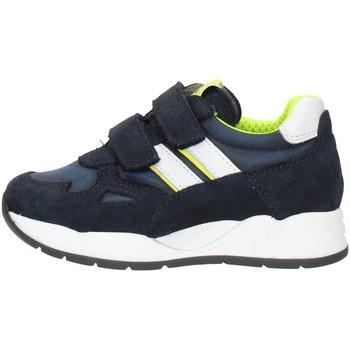 Zapatos Niño Zapatillas bajas Nero Giardini I023910M Azul