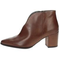 Zapatos Mujer Botines Paola Ferri D4676 Marrón