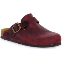 Zapatos Zuecos (Clogs) Bioline VINO INGRASSATO Rosso