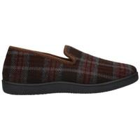 Zapatos Hombre Pantuflas Roal 12010 Hombre Marron marron