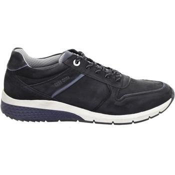 Zapatos Hombre Zapatillas bajas Salamander Tonjo Negro Black