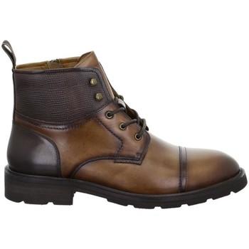 Zapatos Hombre Botas de caña baja Salamander Modena Tan Brown Brown