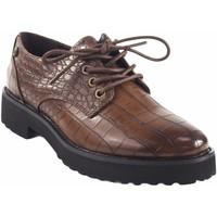 Zapatos Mujer Derbie D'angela Zapato señora  18127 drb marron Marrón
