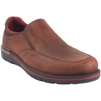 Zapatos Hombre Mocasín Riverty Zapato caballero  726 cuero Marrón