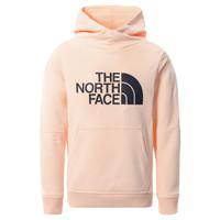 textil Niña Sudaderas The North Face DREW PEAK HOODIE 2.0 Rosa