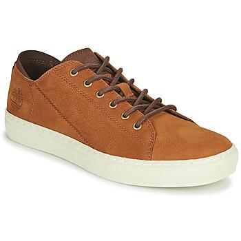 Zapatos Hombre Zapatillas bajas Timberland ADV 2.0 CUPSOLE MODERN OX Cognac