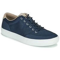 Zapatos Hombre Zapatillas bajas Timberland ADV 2.0 GREEN KNIT OX Azul