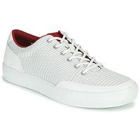 Zapatos Hombre Zapatillas bajas Timberland ADV 2.0 GREEN KNIT OX Blanco