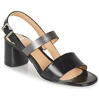 Zapatos Mujer Sandalias Perlato 11805-JAMAICA-NOIR Negro