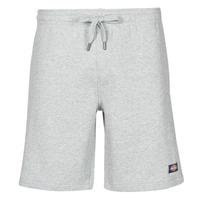 textil Hombre Shorts / Bermudas Dickies CHAMPLIN Gris / China