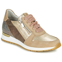 Zapatos Mujer Zapatillas bajas Dorking VIOLA Oro