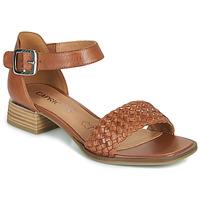 Zapatos Mujer Sandalias Caprice 28208-303 Cognac