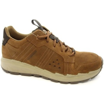 Zapatos Hombre Zapatillas bajas Caterpillar Stratify LO WP Marrón