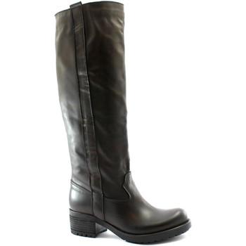 Zapatos Mujer Botas urbanas Divine Follie DIV-I20-115-TM Marrone