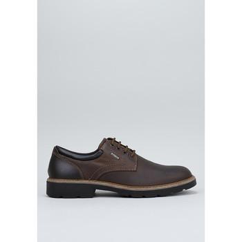 Zapatos Hombre Derbie Imac  Marrón