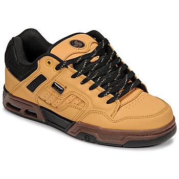 Zapatos Zapatillas bajas DVS ENDURO HEIR Camello / Negro