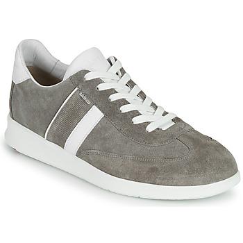 Zapatos Hombre Zapatillas bajas Lloyd BURT Gris