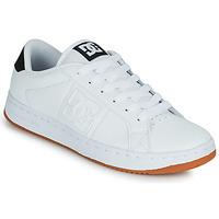 Zapatos Hombre Zapatos de skate DC Shoes STRIKER Blanco / Negro