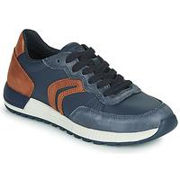 Zapatos Niño Zapatillas bajas Geox J ALBEN BOY Azul