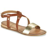 Zapatos Mujer Sandalias Ravel ASPEN Oro / Camel