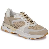 Zapatos Mujer Zapatillas bajas Lumberjack SWAY Beige / Blanco